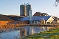 Ekholmen lantbruk djurstall